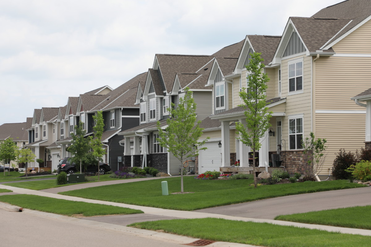 Rochester Looks to Add Tree Ordinance for New Development